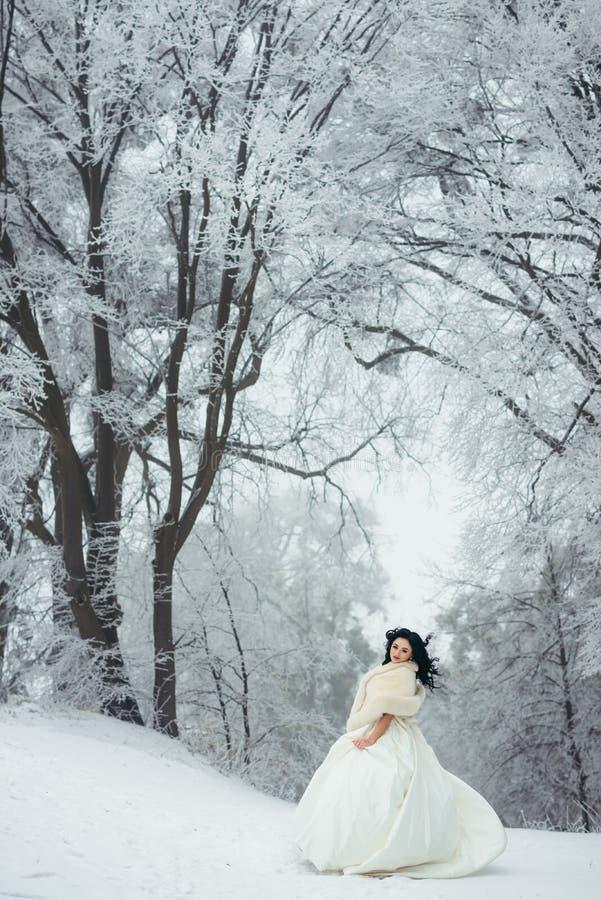 Volledige Lengte Mooie Donkerbruine Bruid die Sneeuwweg Forest Posing Hair Vertical Winter bevinden zich stock fotografie