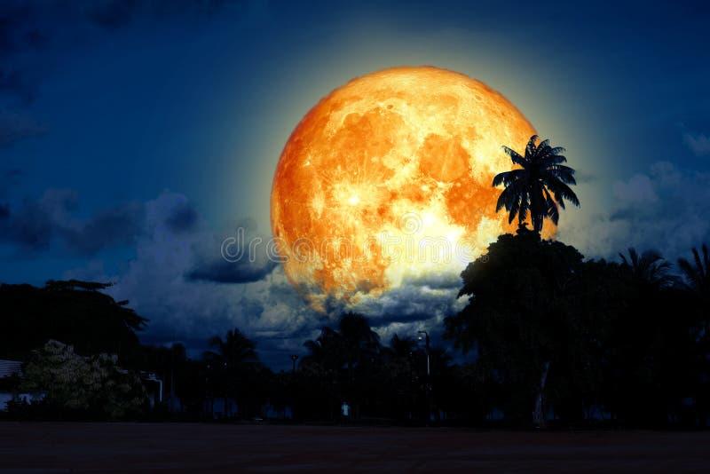 volles Dollarmond-Rückseitenschattenbild und bunter Himmel stock abbildung