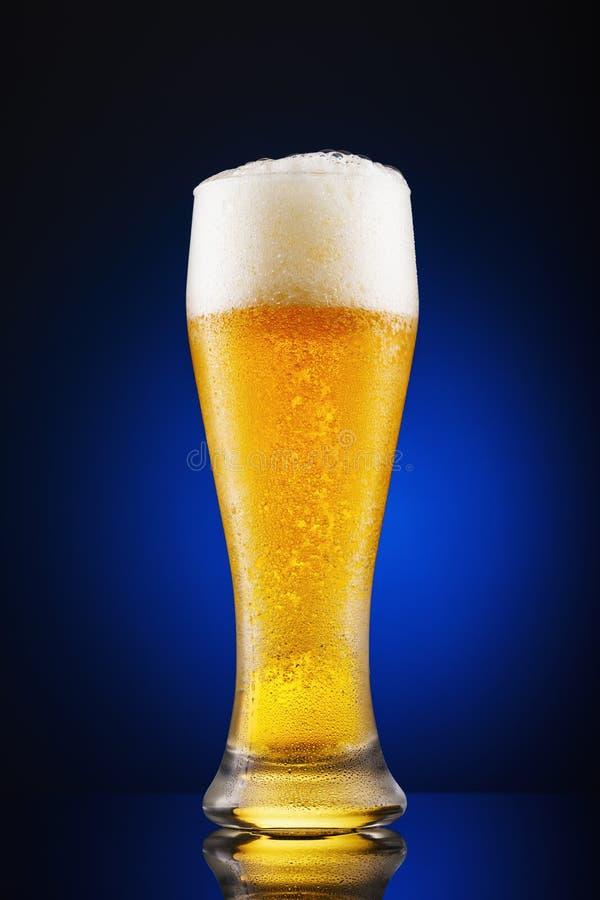 Volles Glas frisch gegossenes Bier auf einem blauen Hintergrund stockfotografie