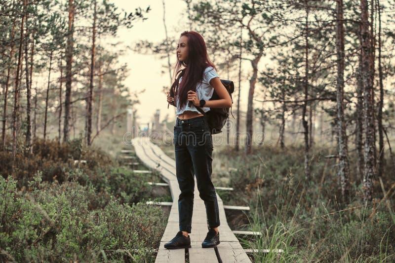 Volles Körperporträt eines touristischen Mädchens, das auf hölzernem Fußweg in einem schönen Wald steht stockbild