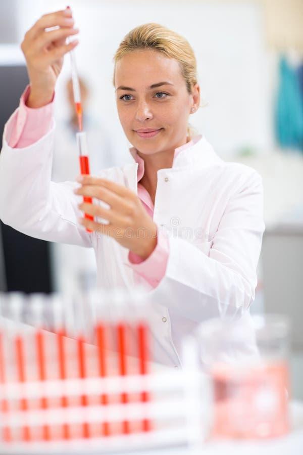 Volles Reagenzglas des Laborchemikers mit langer Pipette stockfoto