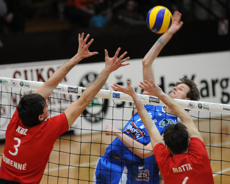 Volleyball action royalty free stock image
