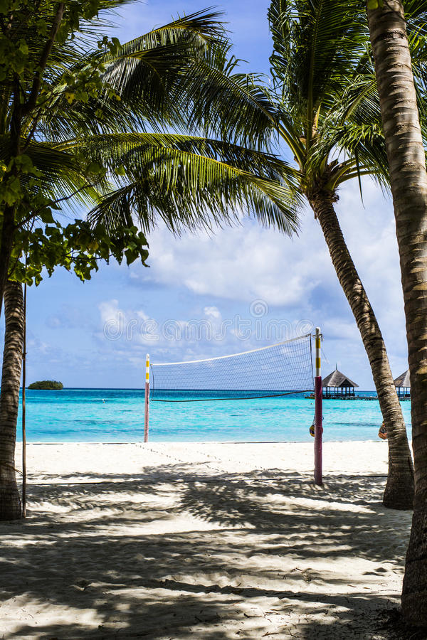 Download Volleyball Net stock image. Image of volleyball, leisure - 75985285