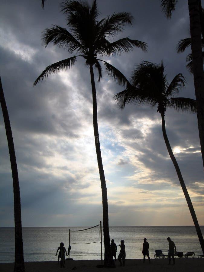 Volleyball unter den Palmen lizenzfreie stockfotos