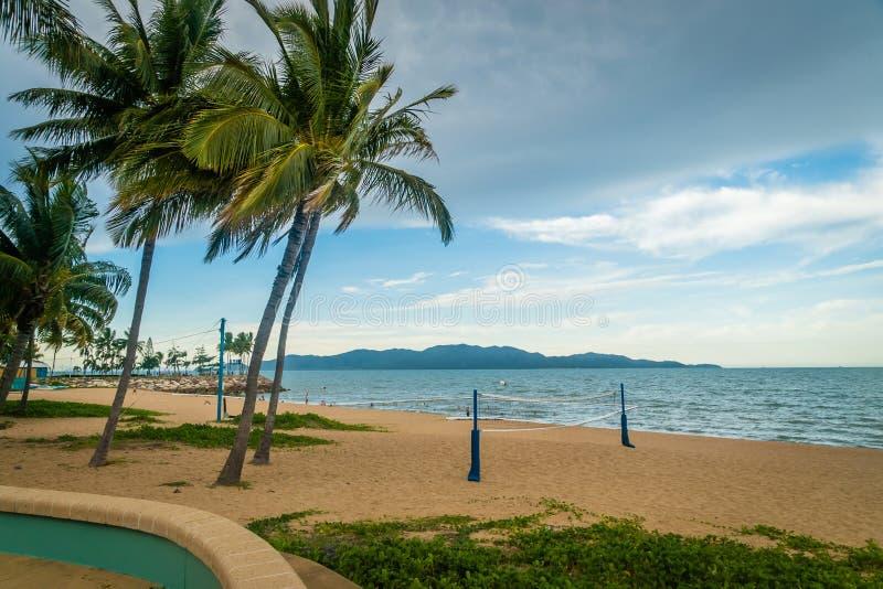 Volleyballfeld auf dem Strand mit Kokosnussbäumen in Townsville, Australien stockfotos