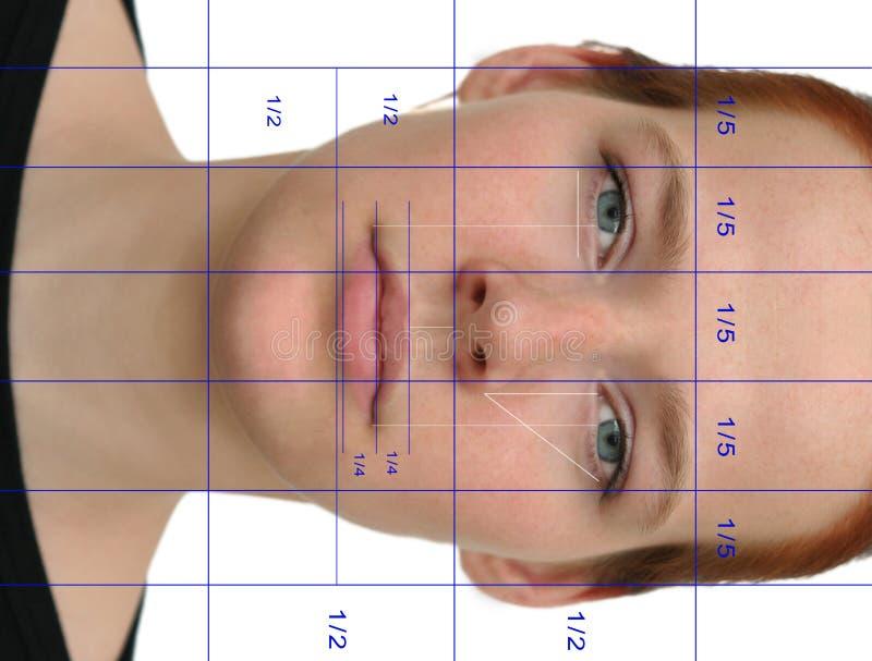 Vollkommenes Gesicht (mit Zeilen) stockfotografie