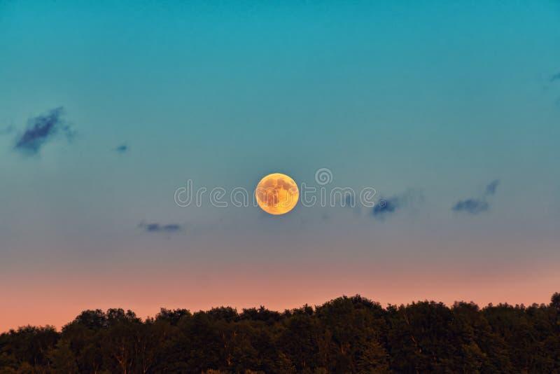 Vollmond über dem Horizont im Abendhimmel stockfoto