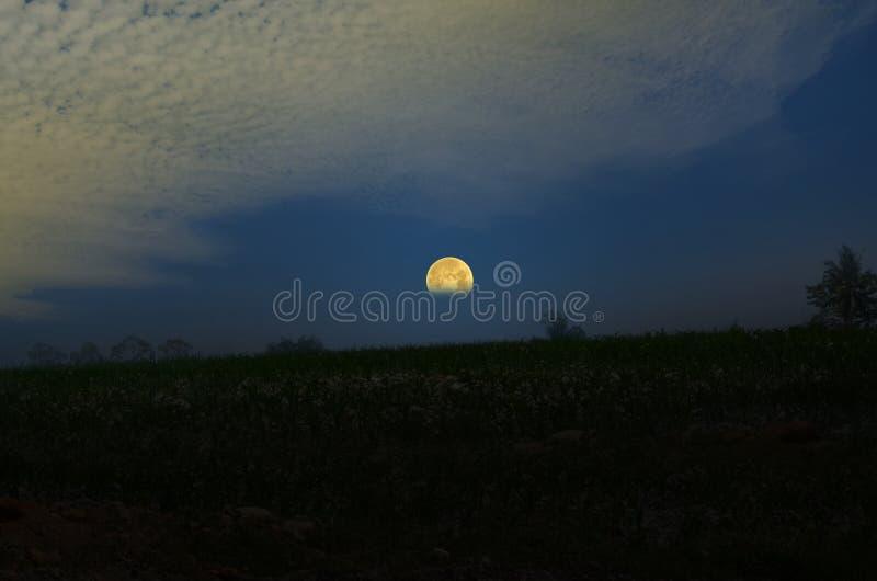 Vollmond steigt über Horizont des Hügels stockfotografie