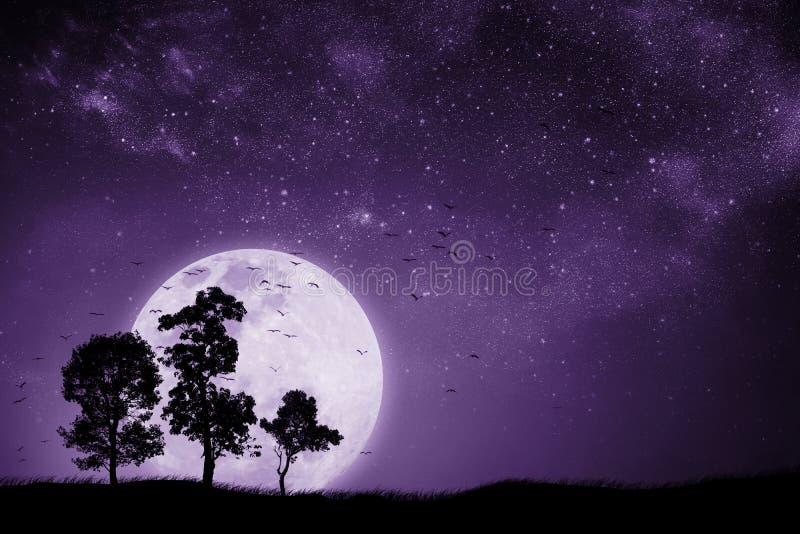 Vollmondnacht mit dem Schatten eines Baums und Vögel, die zurück zu dem Nest fliegen lizenzfreie stockfotos