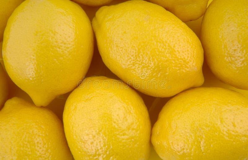Vollständige Zitronen lizenzfreie stockfotos