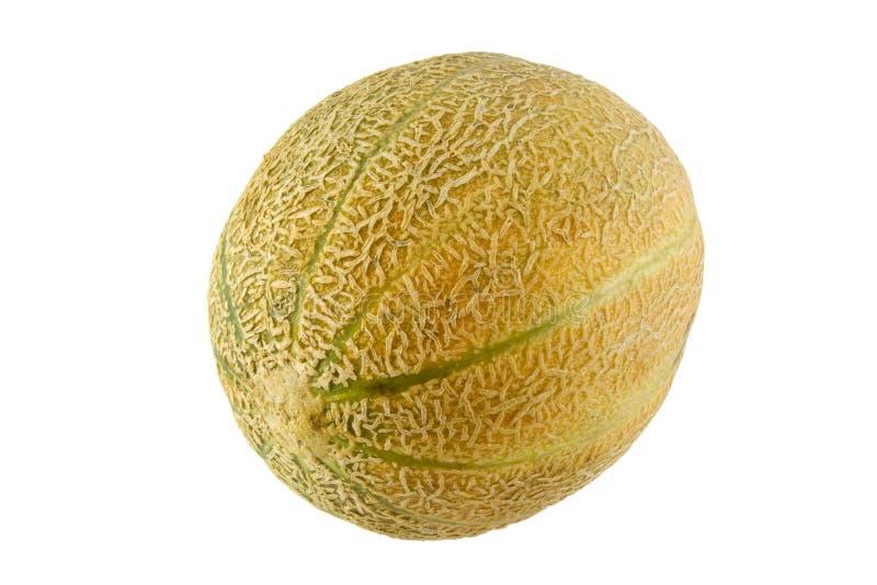 Vollständiges australisches rockmelon stockfotos