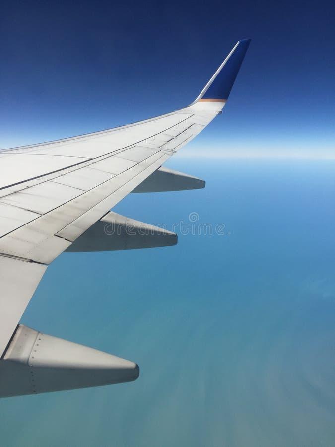 volo fotografie stock libere da diritti
