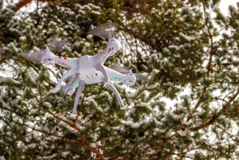 Volo del fuco nella foresta di inverno il concetto dei veicoli aerei senza equipaggio UAV, tecnologia ed osservazioni immagine stock libera da diritti