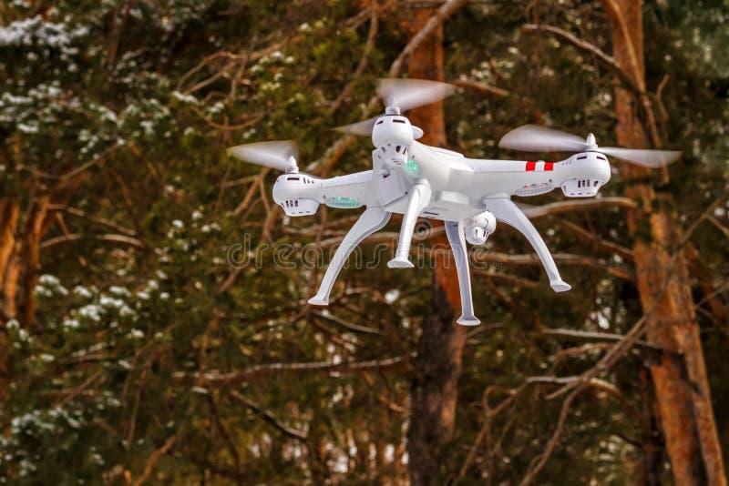 Volo del fuco nella foresta di inverno il concetto dei veicoli aerei senza equipaggio UAV, tecnologia ed osservazioni fotografie stock