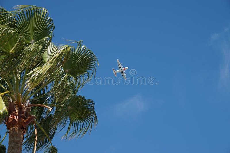 Volo dell'aereo della guardia costiera degli Stati Uniti con la palma fotografia stock