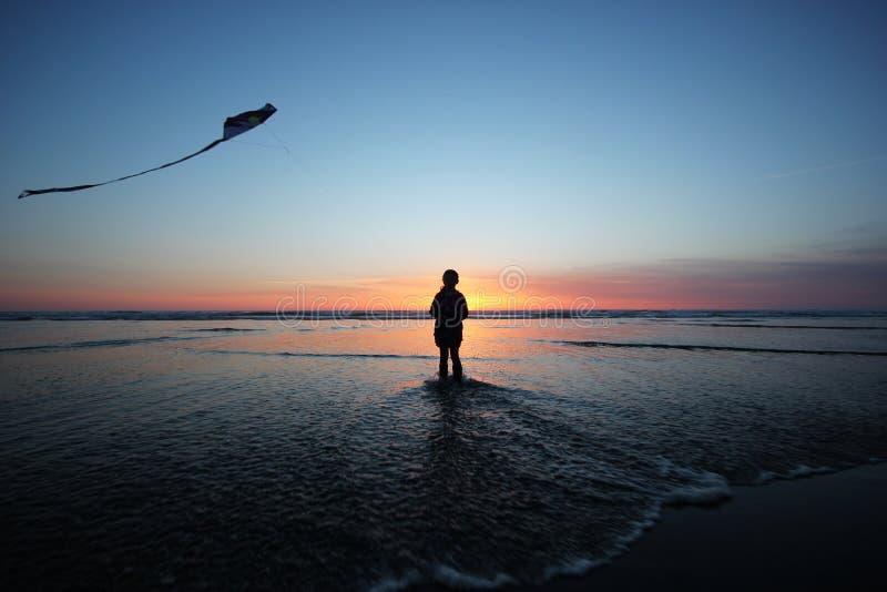 Volo dell'aquilone al tramonto immagine stock