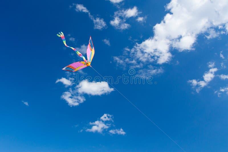 Volo dell'aquilone nel cielo, nel divertimento e nell'eccitare per i bambini immagine stock libera da diritti