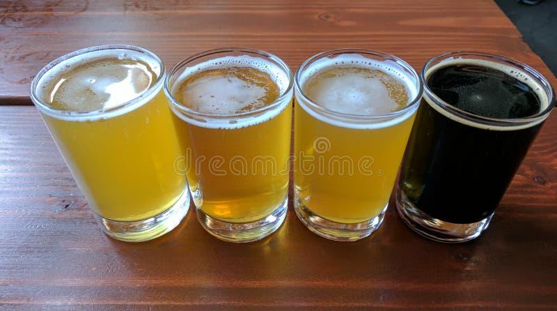 Volo dell'assaggio della birra del mestiere immagine stock