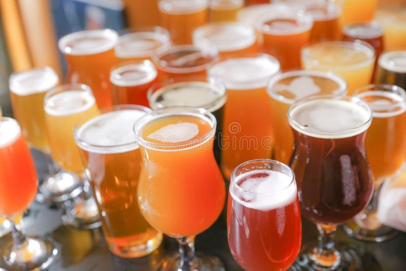 Volo dell'assaggio della birra del mestiere fotografie stock