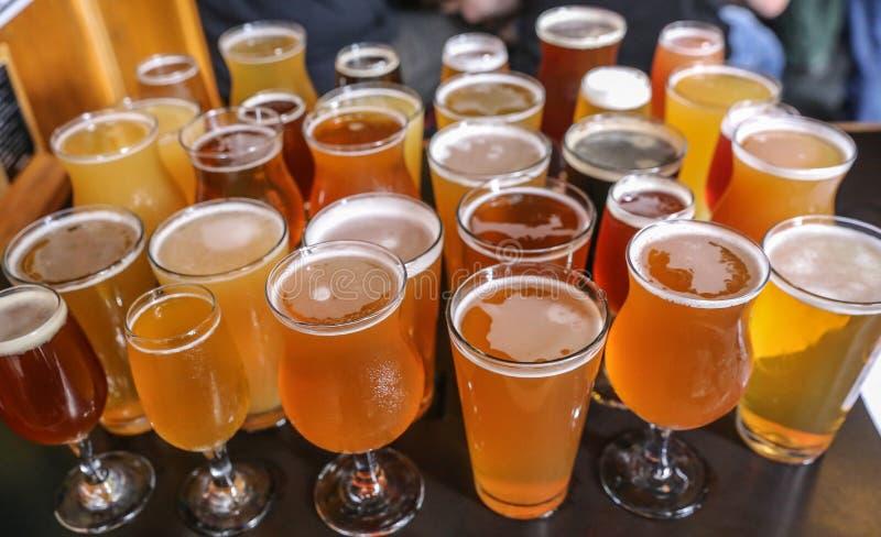 Volo dell'assaggio della birra del mestiere fotografia stock