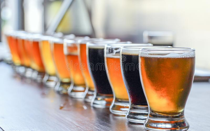 Volo dell'assaggio della birra del mestiere di microbirrificio fotografia stock libera da diritti
