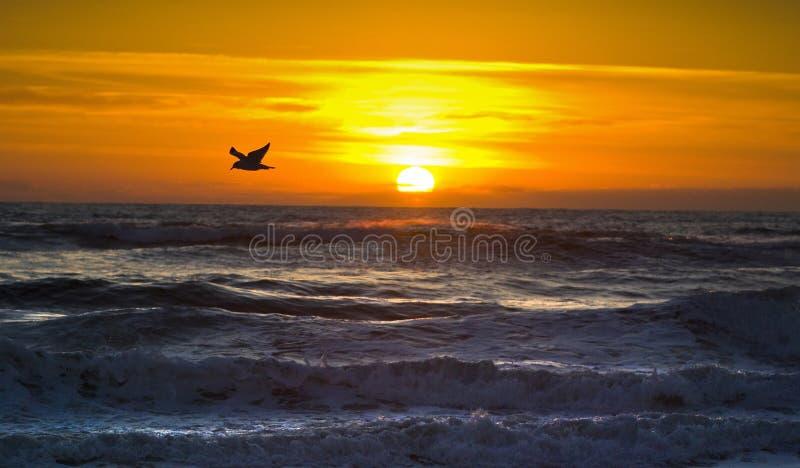 Volo di mattina, banche esterne, nessuna Carolina fotografia stock