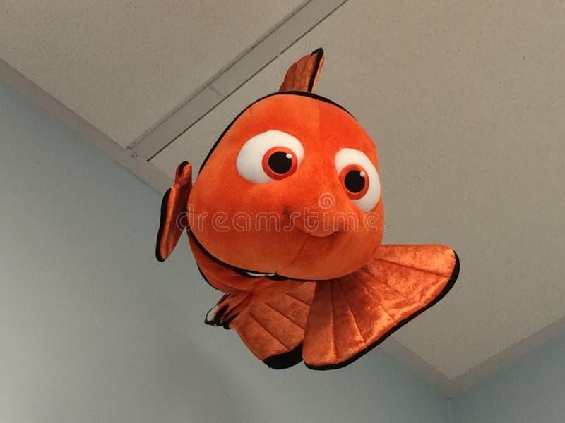 Volo di Nemo fotografie stock libere da diritti