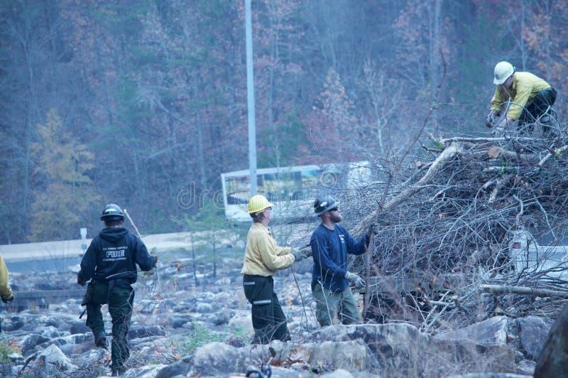 Volontärbrandmännen som hjälper att göra upp ren efter skogsbränderna arkivbilder