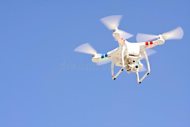 Vols planés de bourdon d'isolement contre le ciel bleu photographie stock
