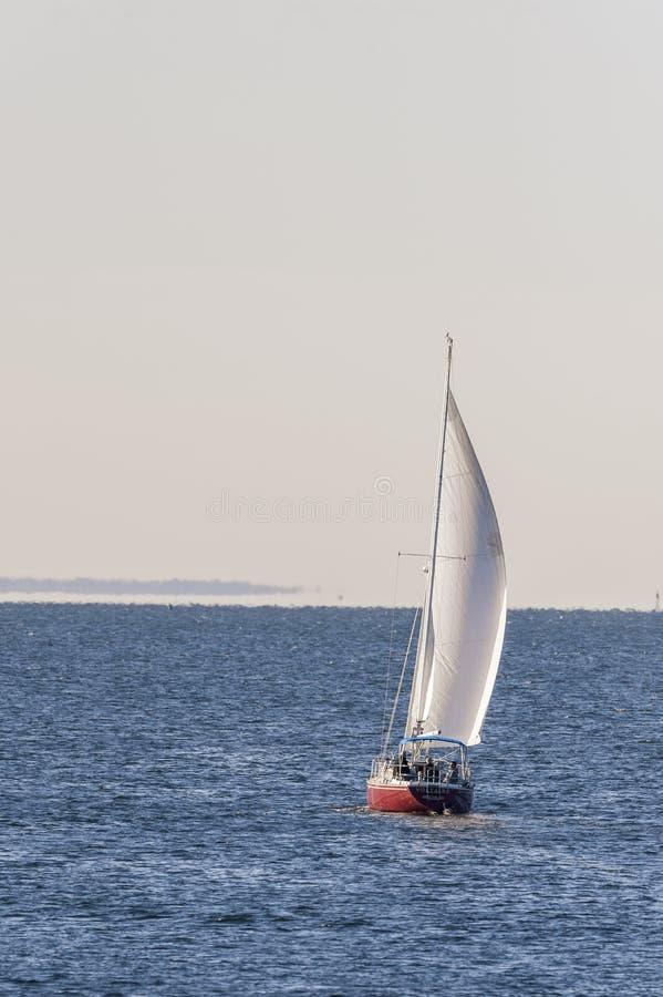 Voltaire a vela diretto nella baia di Buzzards immagine stock