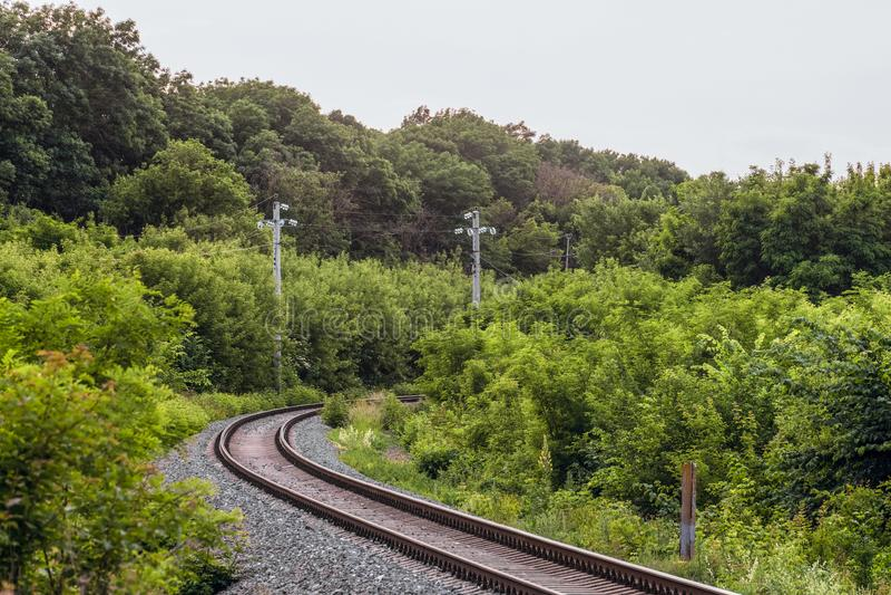 Voltas single-track da estrada de ferro entre árvores verdes fotos de stock royalty free