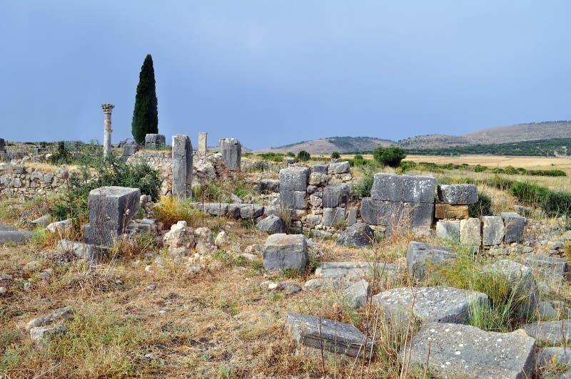 Volubilis - ρωμαϊκές καταστροφές βασιλικών στο Μαρόκο, Βόρεια Αφρική στοκ φωτογραφία με δικαίωμα ελεύθερης χρήσης