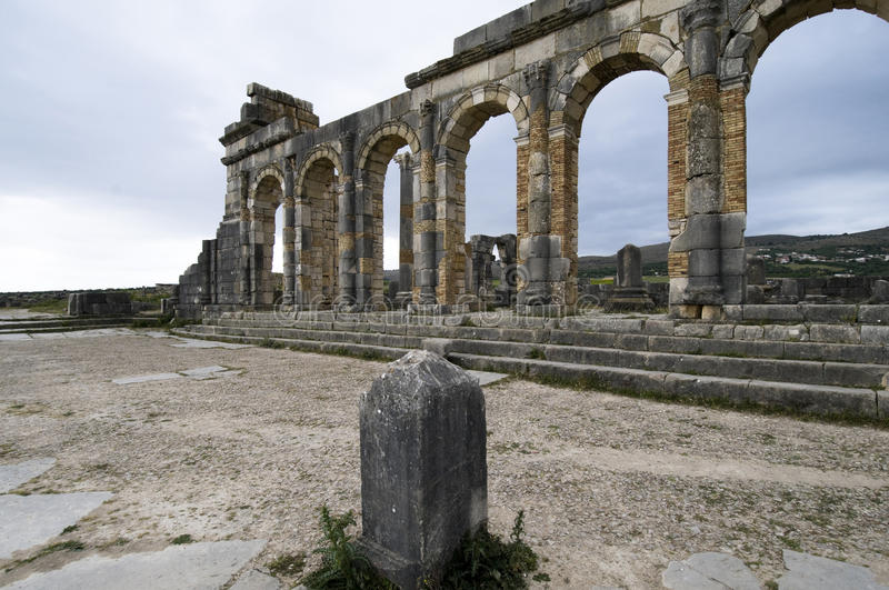 Volubilis image stock