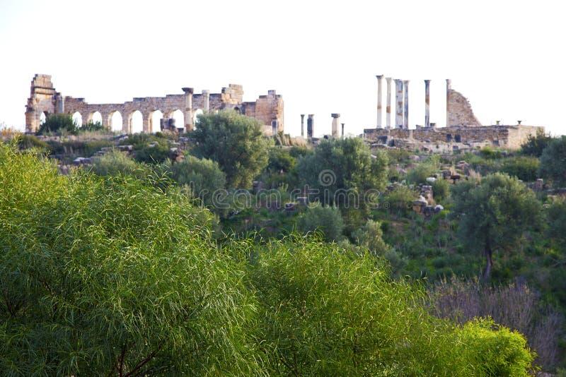 volubilis in Marokko het oude roman monument en de plaats royalty-vrije stock foto