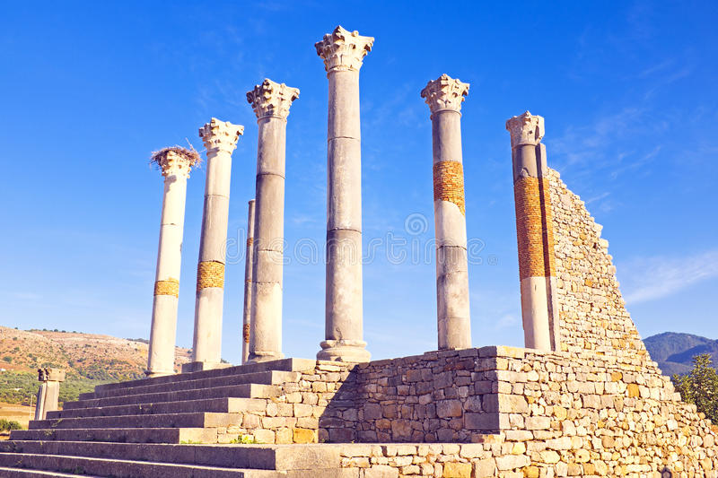 Volubilis, Roman stad in Marokko royalty-vrije stock fotografie