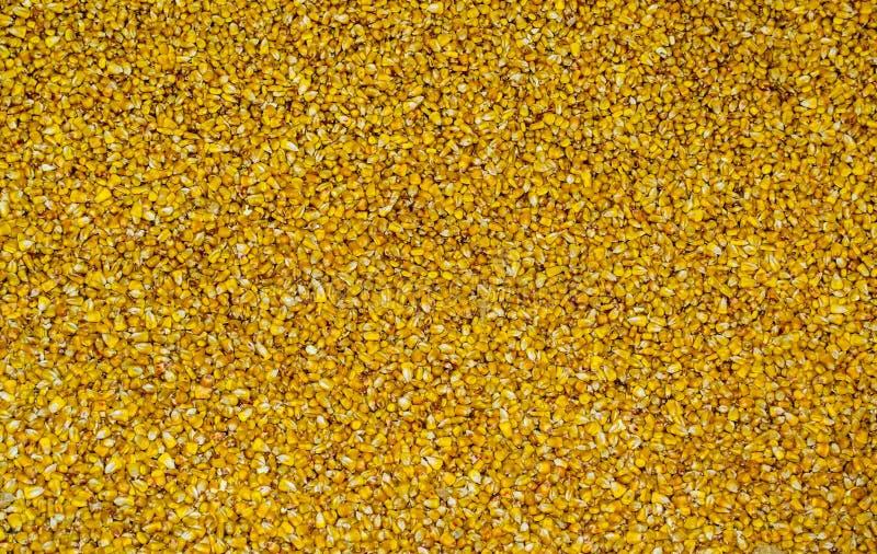 Volume da textura amarela das grões do milho fotografia de stock