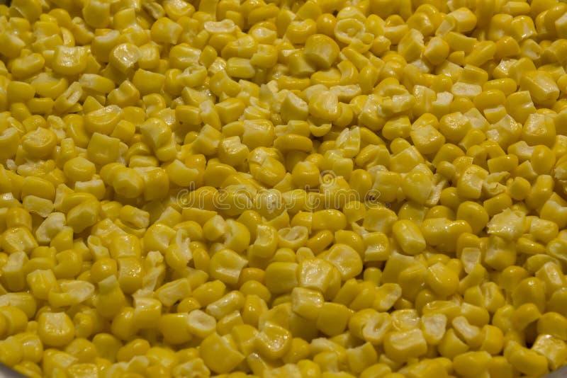 Volume da textura amarela fervida das grões do milho foto de stock
