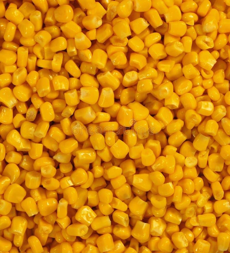 Volume de grões amarelas do milho fotografia de stock