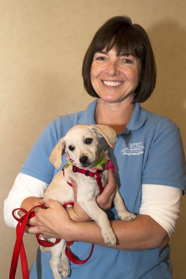 Voluntário e cachorrinho humanos da sociedade do Arizona imagens de stock royalty free