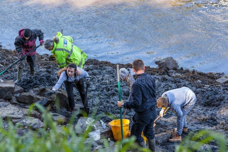 Voluntários na escavação arqueológico foto de stock royalty free