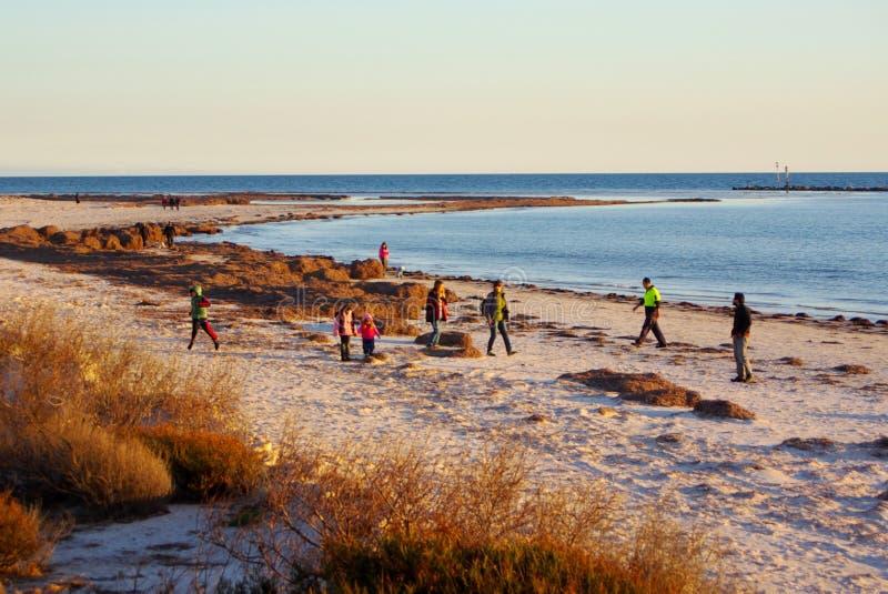 Voluntários na praia fotografia de stock