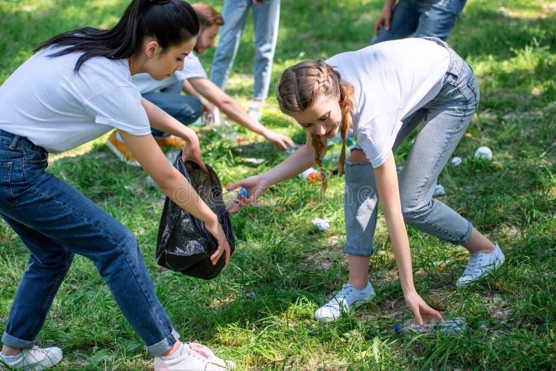 voluntários novos que limpam o gramado foto de stock