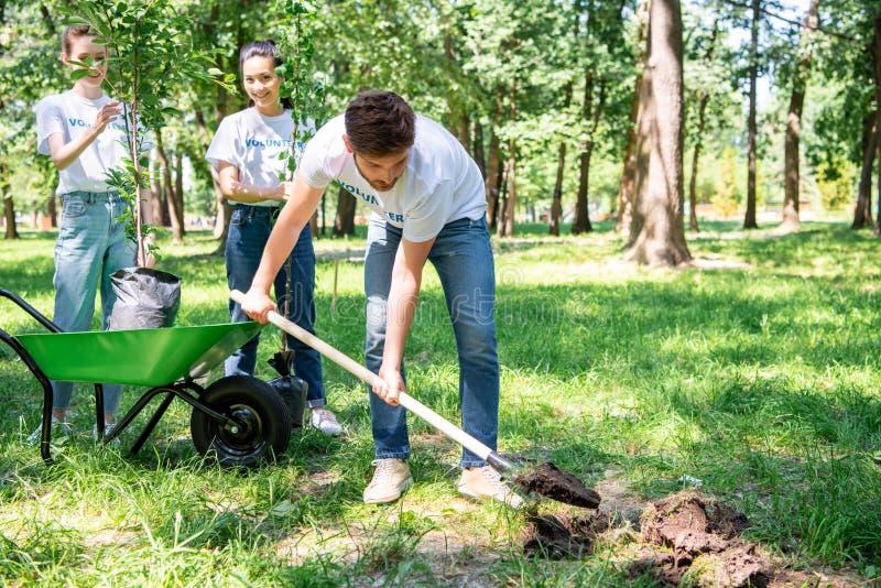 voluntários que plantam a árvore foto de stock royalty free