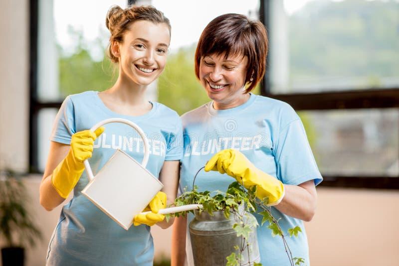 Voluntários que tomam das plantas imagem de stock