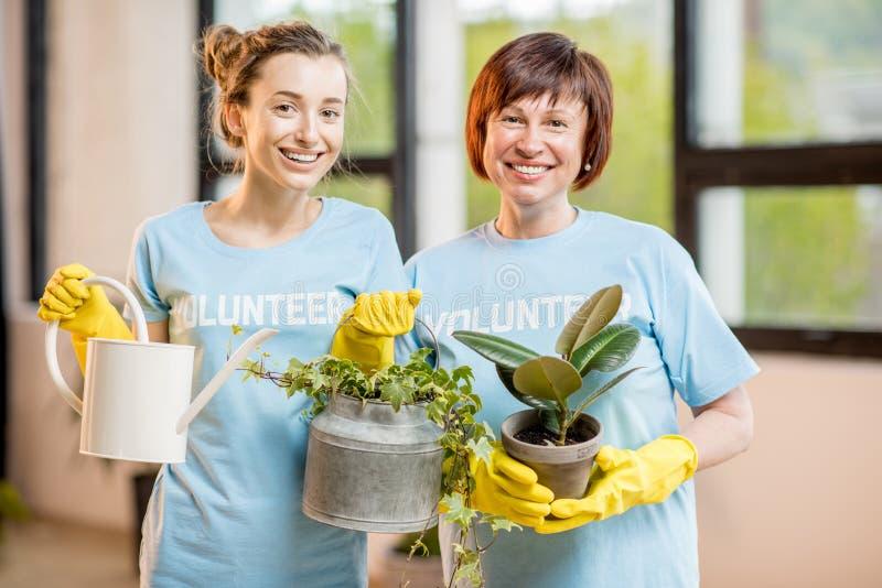 Voluntários que tomam das plantas imagem de stock royalty free