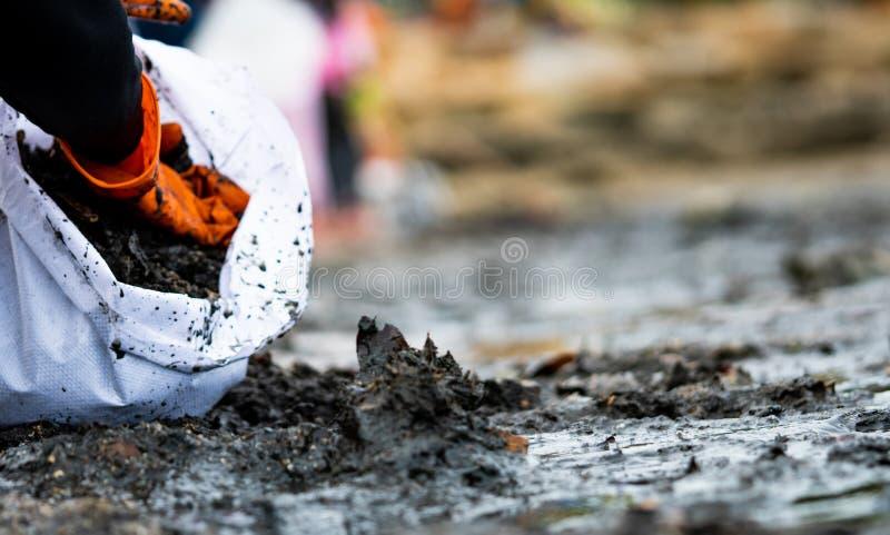 Voluntarios que recogen la basura Contaminación del ambiente de la playa Voluntarios que limpian la playa en fondo borroso fotos de archivo
