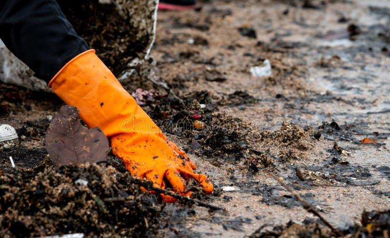 Voluntarios que recogen la basura Contaminación del ambiente de la playa Voluntarios que limpian la playa en fondo borroso imagen de archivo libre de regalías