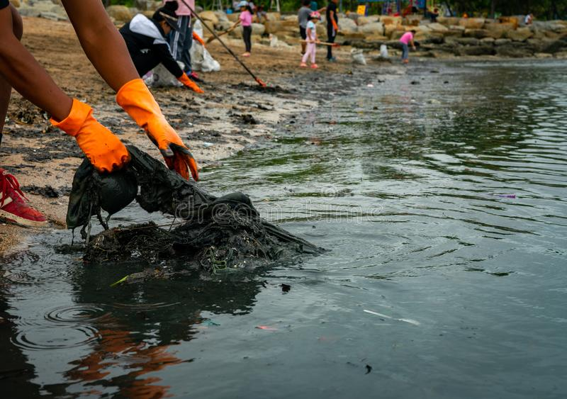 Volunteers wear orange rubber gloves to collect garbage on the beach. Beach environment pollution. Volunteers cleaning the sand. stock photos