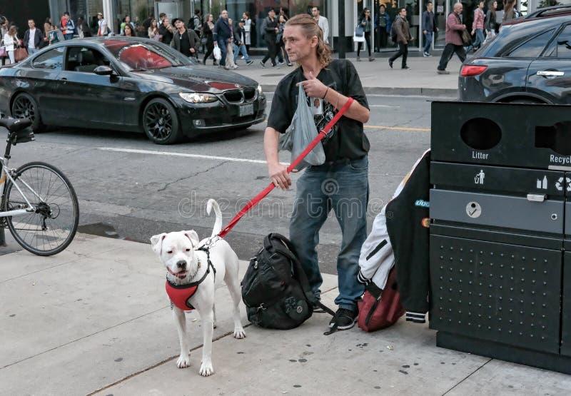 Volwassen die mannetje met zijn huisdierenhond wordt gezien in een Amerikaanse stad stock afbeelding