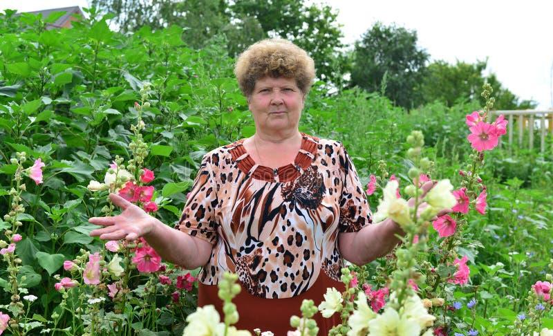 Volwassen vrouw die zich dichtbij bloeiende malve bevinden royalty-vrije stock afbeeldingen